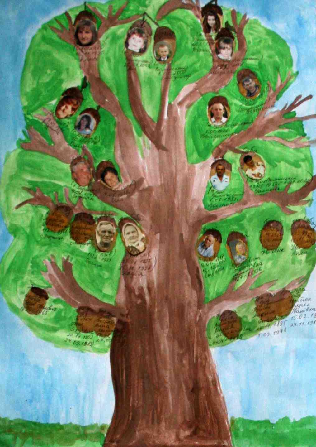 Поиск людей. Генеалогическое древо, родословная 41